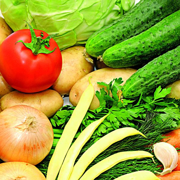 Mykorrhiza kann auch im Gemüseanbau hilfreich sein